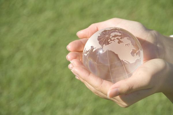 モリンガで環境保護活動